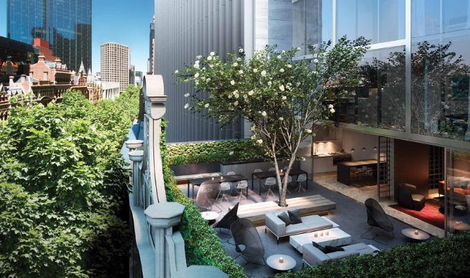 Collins terrace